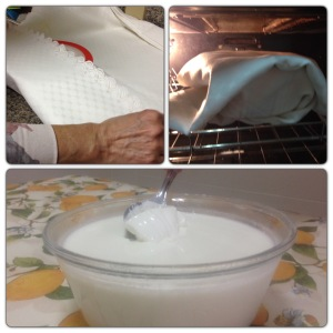DIY yogurt4